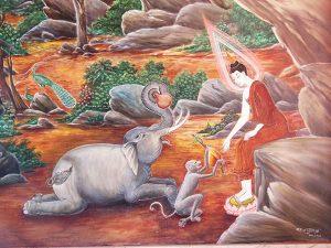 พระสุมงคล (ช้างปาลิไลยกะ)